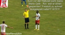 SC Wiener Neustadt vs. Red Bull Salzburg | 0:5 - Die Highlights(26.07.2014)